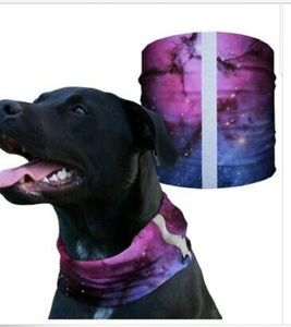 Nebula Dog Bandana Shield
